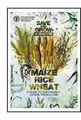 Save and Grow in Practice: Maize, Rice, Wheat cover